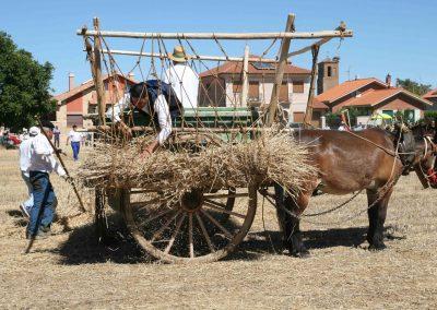En la tierra_cargando el carro_La Trilla 2017