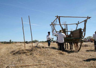 En la tierra_colocando redes carro_La Trilla 2017